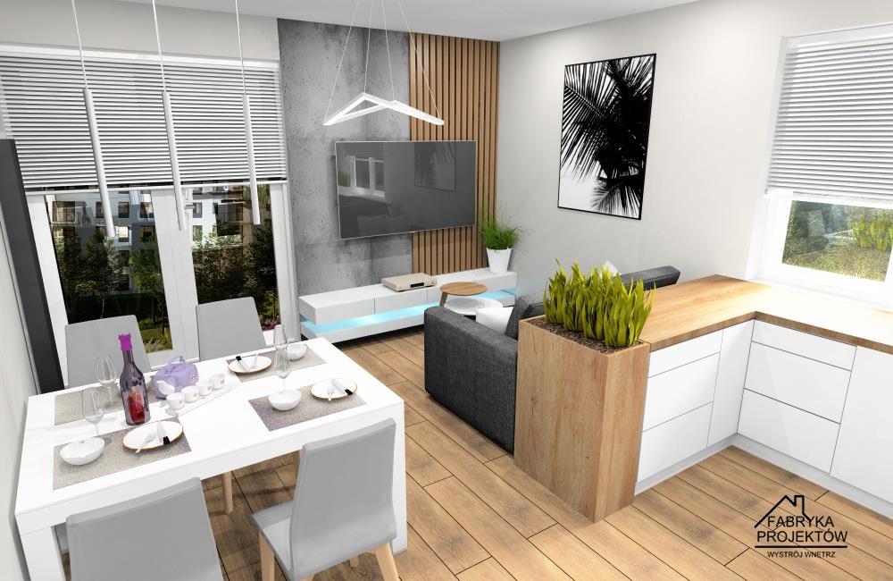 Salon z aneksem kuchennym 20m2. Jak urządzić ?, projekt wnętrza