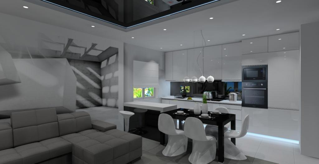 salon z kuchnią, kuchnia z jadalnią, nowoczesne wnętrze, projekt kuchni z salonem