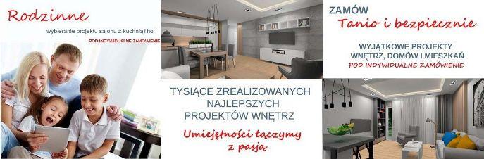 Salon z kuchnią i hol