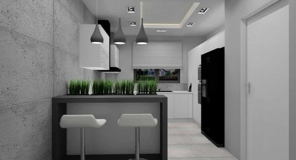 Aranżacja kuchni, nowoczesne wnętrze
