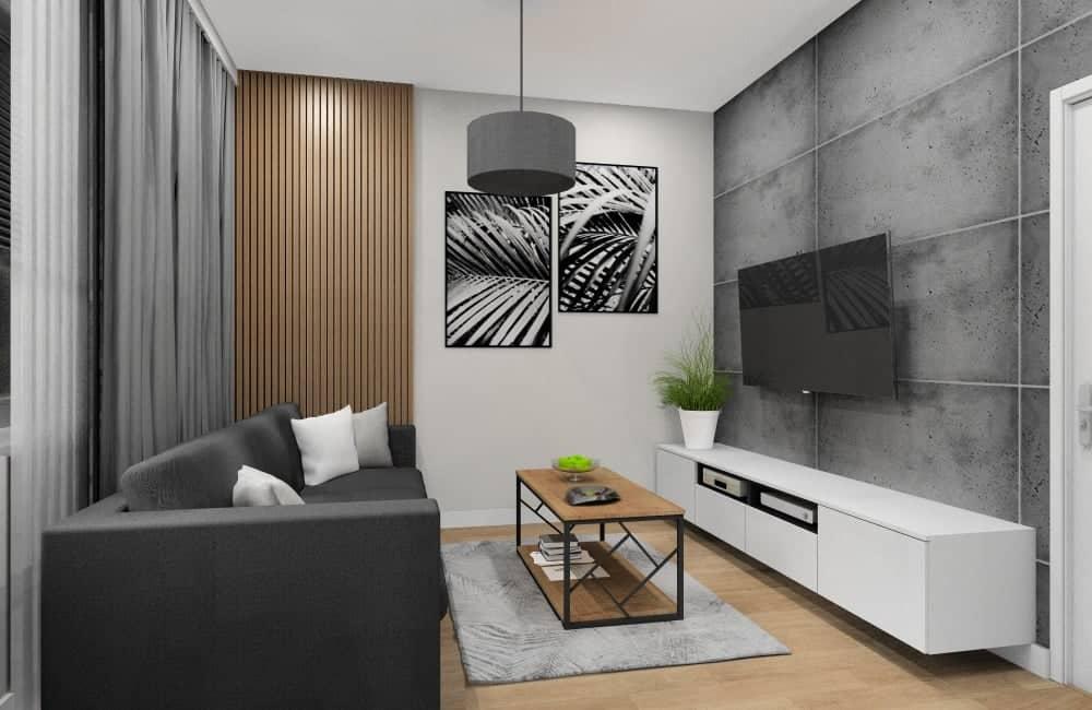 Salon połączony z kuchnią w małym mieskzaniu, szafka RTV biała, beton na ścianie RTV, stolik kawowy drewno, szary dywan, obrazy na ścianie